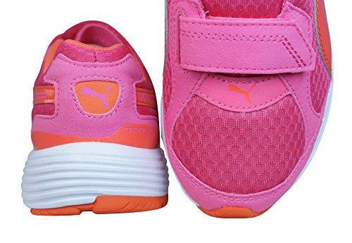 Puma  Descendant V Kids, Chaussures spécial sports en salle pour garçon pink