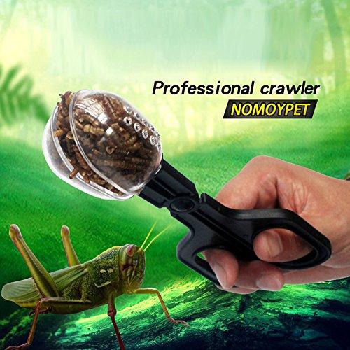 Gorgebuy Reptile Zange clip,Futter cilp für Reptilien, Aquarium,Terrarium-Reptilien Feed Werkzeug