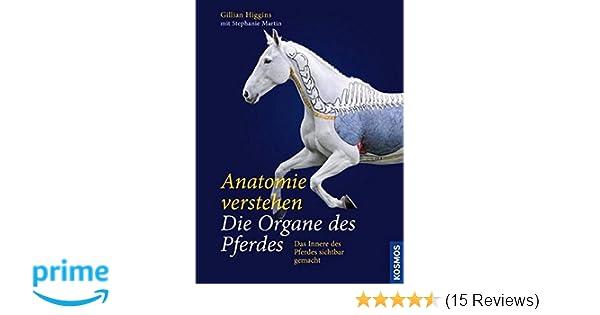 Anatomie verstehen - Die Organe des Pferdes: Das Innere des Pferdes ...