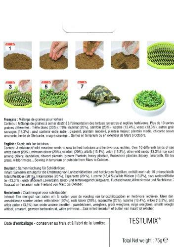 Testumix Mélange de graines à semer pour Tortues et Reptiles 75 grammes