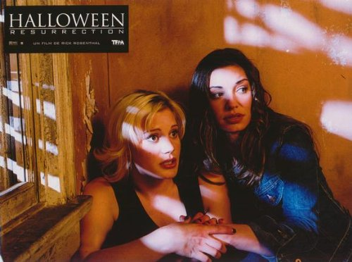 Halloween: Resurrection Plakat Movie Poster (11 x 14 Inches - 28cm x 36cm) (2002) French D