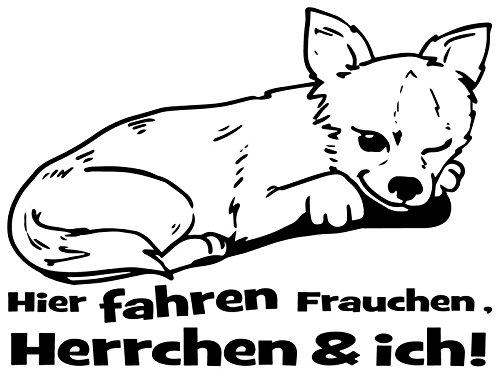 hihuahua Welpe Spruch Hier fahren Frauchen & ich dog Sprüche Auto Heckscheibe Aufkleber KFZ 2C062, Farbe:Weiß glanz, Breite vom Motiv:25cm ()