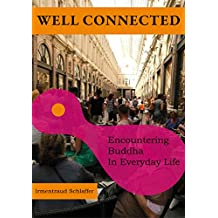 Well Connected: Encountering Buddha In Everyday Life (English Edition)