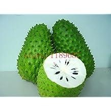 20 pezzi Soursop graviola Guanabana Annona muricata SEMI Tropical Frutta NO-OGM bene alla salute
