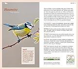 Gartenvögel: Die wichtigsten Arten entdecken und bestimmen - 4
