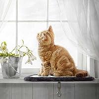 PetPäl Katzenliege Perfekter Fensterliegeplatz für Katzen mit Kratzbrett | DIE Liegefläche (39x29cm) am Lieblings Fensterplatz für die Katze | Ideale Fensterbank Liegeplatte