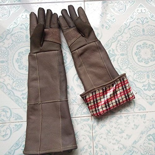 Anti Greifen Biss Schutz Komfort Doppel- Handschuhe Braun,DoubleLayer-L (Tier Handschuhe Braun)