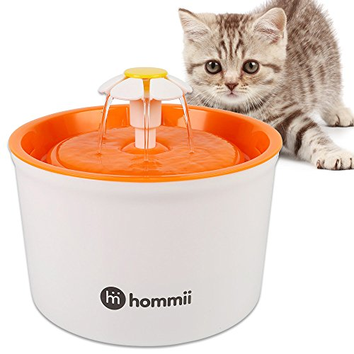 fontaine a eau pour chat à pile