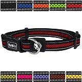 DDOXX Hundehalsband reflektierend Air Mesh | für große & Kleine Hunde | Katzenhalsband | Halsband | Halsbänder | Hundehalsbänder | Hund Katze Katzen Welpe Welpen | klein breit bunt | Rot, M