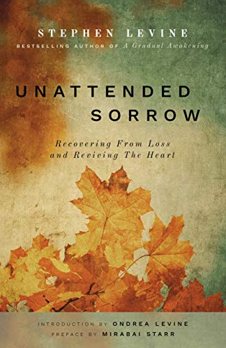 Télécharger Unattended Sorrow: Recovering from Loss and Reviving the Heart Gratuit
