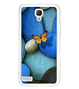 PrintVisa Butterfly On Peebles High Gloss Designer Back Case Cover for Xiaomi Redmi Note :: Xiaomi Redmi Note 4G