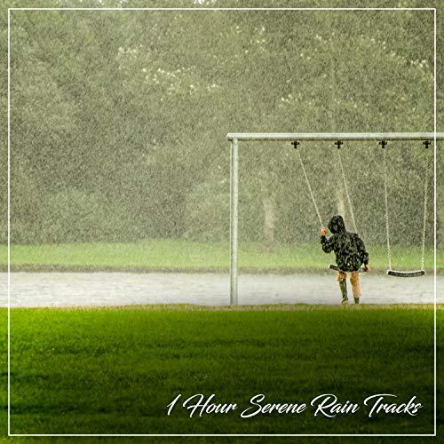 1 Hour Serene Rain Tracks for Mindfulness