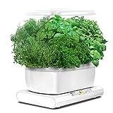Miracle-Gro AeroGarden Harvest avec kit de capsules de graines d'herbes gourmets