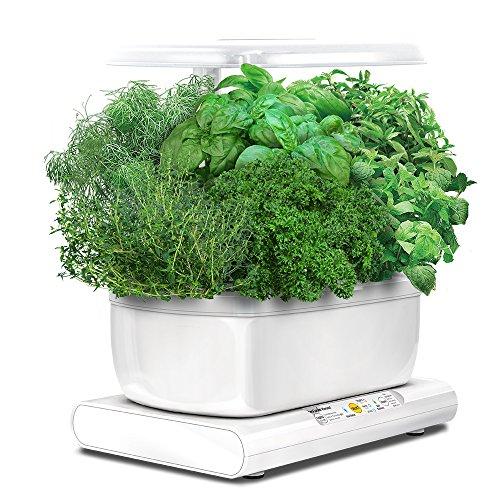 Miracle-Gro AeroGarden Harvest avec kit de capsules de graines d'herbes gourmets (blanc)