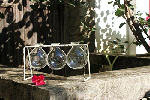 Stent Mesa vaso di vetro verde Ravanello Vaso da fiori Hydroponics Articoli per la casa di fiori