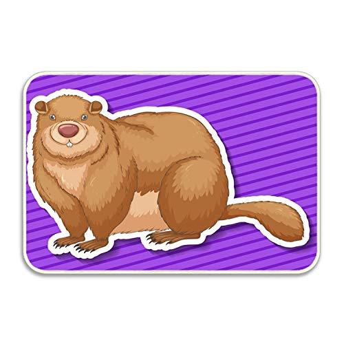 jingqi Personalized Funny Cute Brown Beaver Mats Entrance Mat Floor Rug Indoor/Bathroom Mats 15.7x23.6 inch/40x60cm -