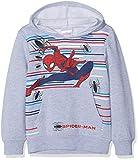 Marvel Spiderman, Sudadera con Capucha para Niños, Light Grey Melange, 3 años