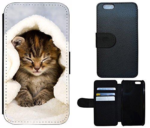 Flip Cover Schutz Hülle Handy Tasche Etui Case für (Apple iPhone 4 / 4s, 1005 Pferd Braun Weiß Hengst) 1003 Katze Katzen Baby Braun Blau Weiß