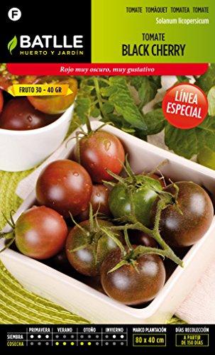 semillas-batlle-tomate-black-cherry