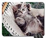Best Hamacs Cat - Hamac Chat Mouse Pad, Mousepad (Cats Mouse Pad) Review