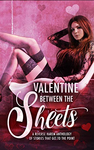 Valentine Between the Sheets: A Reverse Harem Anthology of Stories that Get to the Point (English Edition)