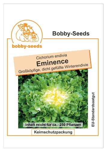 Bobby-Seeds Salatsamen Eminence, Winterendivie Portion