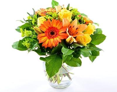 Blumenversand - Blumenstrauß - zum Geburtstag - Sonnenstrahl - leuchtende Sunspot Gerbera mit Gratis - Grußkarte zum Wunschtermin versenden von Der Renner - Blumenversand auf Du und dein Garten