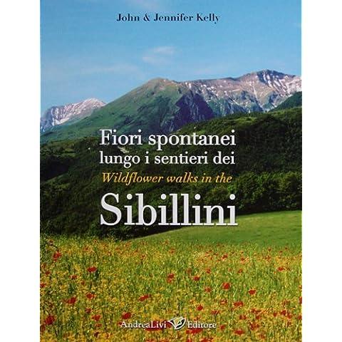 Fiori spontanei lungo i sentieri dei Sibillini-Wildflower wlaks in the Sibillini