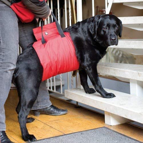 'Aiuto al trasporto 'Helping Harness-Rosso -