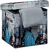 Relaxdays 10019050_363 - Banco taburete con función de Baúl de cuero sintético, 38 x 38 x 38 cm, carga máxima 300 Kg, se puede almacenar muchas cosas, diseño New York