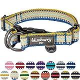 Blueberry Pet 2cm M 3M Reflektierendes Bunt Gestreiftes Ingwer und Blau Hundehalsband für Mittelgroße Hunde