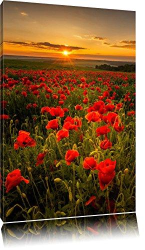 Wunderschöne Mohnwiese im Sonnenuntergang Format: 60x40 auf Leinwand, XXL riesige Bilder fertig gerahmt mit Keilrahmen, Kunstdruck auf Wandbild mit Rahmen, günstiger als Gemälde oder Ölbild, kein Poster oder Plakat
