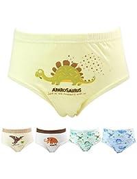 Allmeingeld Enfants Garçons Lot de 5 Paires de 100% Coton Imprimé Dinosaure Slip Enfants Sous-vêtement Taille 3-11ans