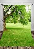 Coloc Photo® 150*220cm fleurs Photo fond arbres jardin loft mariage décors de photographie pour le Studio intérieur PhotosD-662
