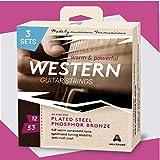 Gitarrensaiten Westerngitarre 3 SETS .012 .053 ♪♪ KRAFTVOLLER & WARMER KLANG ♪♪ OPTIMIERTE STIMMSTABILITÄT ♪♪ 6-Saiten-Set für Akustik-Gitarre ★AMAZOUND★
