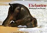 Elefanten. Badespaß am Strand (Wandkalender 2019 DIN A3 quer): Elefanten Babys beim Baden in Thailand (Monatskalender, 14 Seiten ) (CALVENDO Tiere)