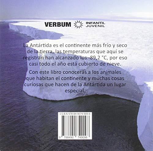 Conoce la Antártida