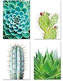PICSonPAPER Poster 4er-Set KAKTEEN, ungerahmt Din A3, Dekoration für Wohn- und Arbeitsräume, Kaktus, Wandbild, Kunstdruck, Geschenk (Ohne Bilderrahmen Din A3)