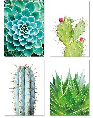 PICSonPAPER Poster 4er-Set KAKTEEN, ungerahmt DIN A4, Dekoration für Wohn- und Arbeitsräume, Kaktus, Wandbild, Kunstdruck, Geschenk (Ohne Bilderrahmen)