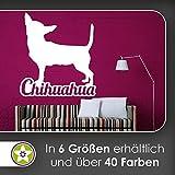 hauptsachebeklebt KIWISTAR Chihuahua mit Name Schrift Silhouette Wandtattoo in 6 Größen - Wandaufkleber Wall Sticker