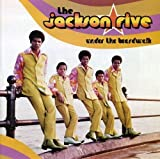 Under the Boardwalk by Jackson Five (2008-02-26) -