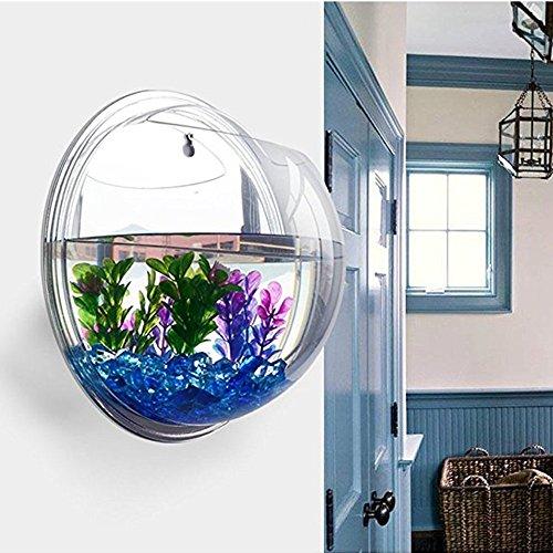 Sotoboo appeso a parete fish tank–fioriera plant erba acrilico vasi per fiori da appendere fish tank bowl mini acquario decorazione della casa ufficio decorazione, vetro trasparente, clear, 29.5cm