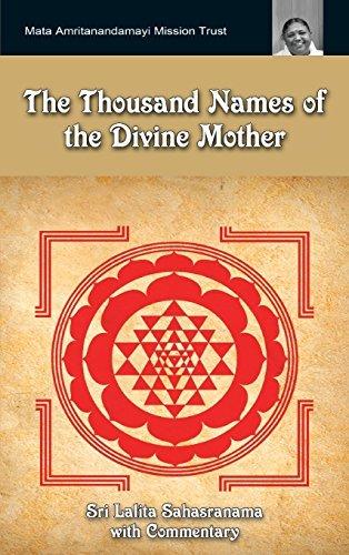 Divine Center Al Mejor Precio De Amazon En Savemoney