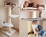 Kratzbaum große Katze XXL Royalty Creme Weiß. Normal €219 ! Super Amazon Promo. Sisalstämme 20cm Ø Katzenkratzbaum für große und schwere Katzen. Europäische Qualitätsproduktion von RHRQuality - 7