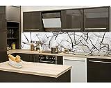 Küchenrückwand Folie selbstklebend LÖWENZAHNSAMEN 260 x 60 cm | Klebefolie - Dekofolie - Spritzchutz für Küche | PREMIUM QUALITÄT