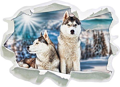 Due Huskies selvatici, di carta 3D autoadesivo della parete formato: 62x45 cm decorazione della parete 3D Wall Stickers murali Stickers