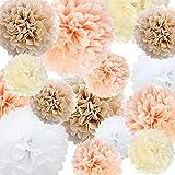 Papier de soie Pom Poms Fleur de papier 22 Pcs Champagne, Pêche, Ivoire, Blanc pour Anniversaire Bachelorette Mariage Baby Shower Nuptiale Douche Décoration