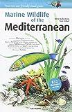 MEDITERRANEAN -MARINE WILDLIFE