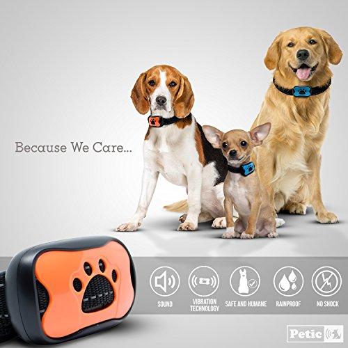 Zoom IMG-1 petic collare anti abbaio cani