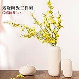 kx adornos de cermica blanca jarrones de flores secas piezas conjunto